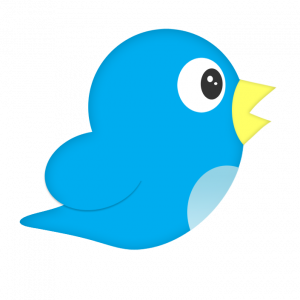 Twitter Guide for Newbies - FREE!